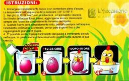 Uovo con pulcino che schiude